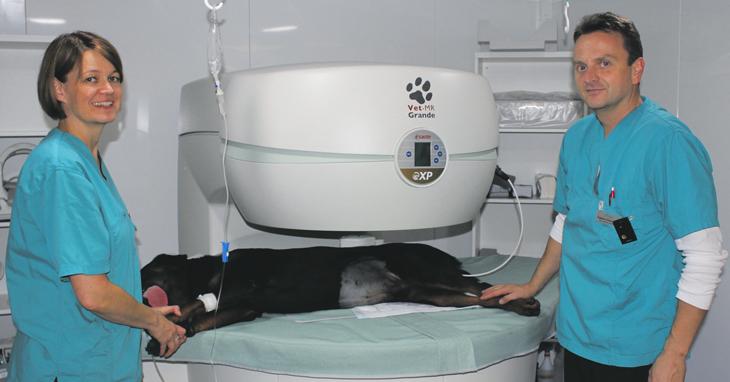 Eläinpotilaille huippuluokan hoitoa